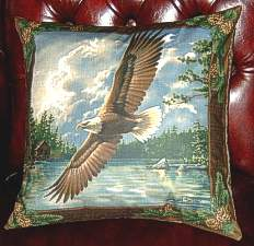 Beautiful soaring Eagle