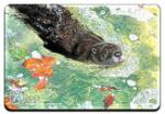 View details for this Otter Animal Magnet